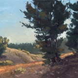 mount rose trail | 9″ x 12″ oil on canvas board – SOLD private collection